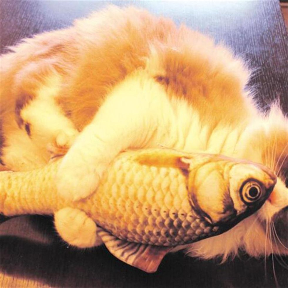 Pet Cat Play Fish Shape Interactive Mint Catnip Chewing Kids Gifts Scratch Toy